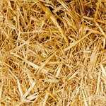 馬プラセンタ サプリメント|ヒアルロン酸が内包された化粧品類の利用によって叶うであろう効果は…。